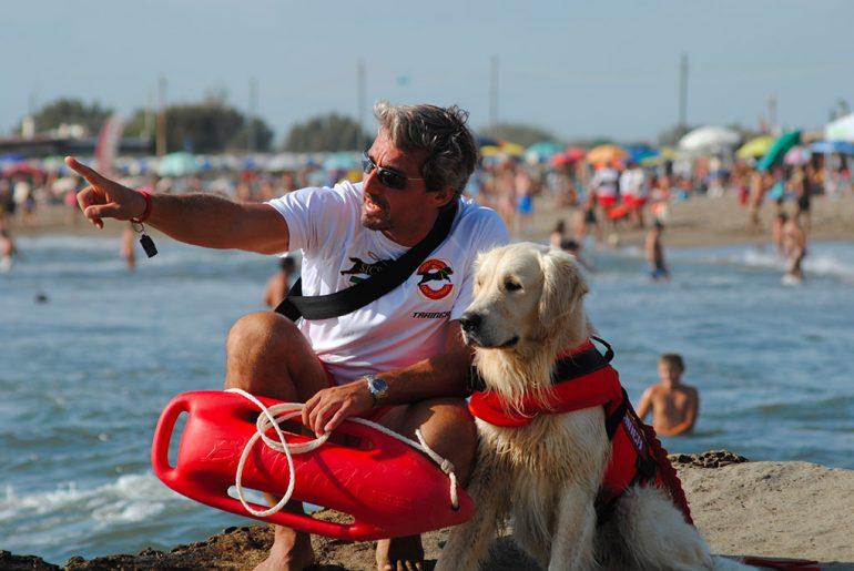 trainer cani eroi